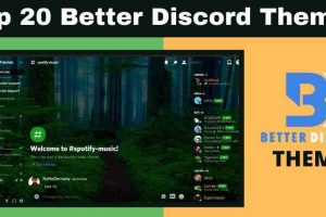 Top 20 Better Discord Themes (2021) – With Support